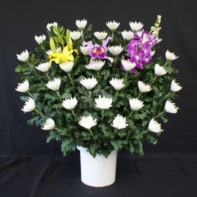<strong>生花 A</strong><br>祭壇両脇にお飾りする生花になります。